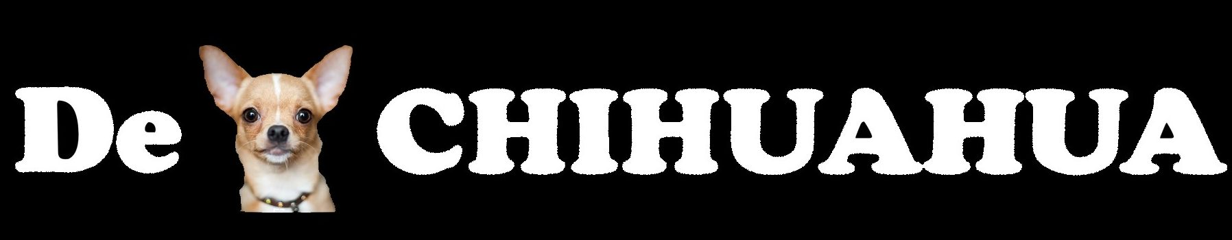 DECHIHUAHUA.ORG