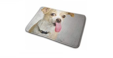 alfombras con Chihuahuas dibujados