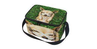 bolsas de almuerzo con dibujos de Chihuahuas