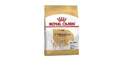 Comida especial para Chihuahuas